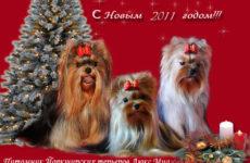 Поздравляем всех с Новым годом!!!