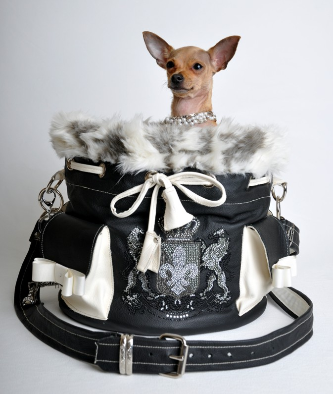 glamour bags for dog